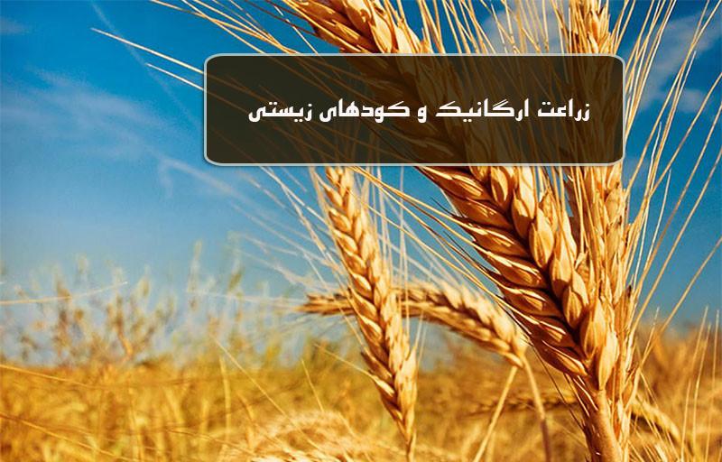 زراعت ارگانیک و کود زیستی