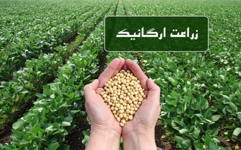 زراعت ارگانیک