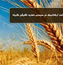 زراعت ارگانیک در سیستم تغذیه تلفیقی گیاه