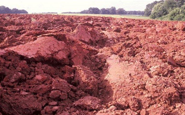 آشنایی با انواع خاک